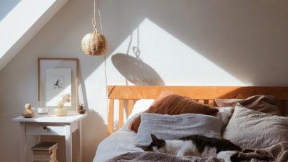 lumière-naturelle-éclairage-lumière-du-jour-bienfaits-atout-avantage-santé-horloge-biologique